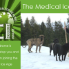 The Medical Ice Age